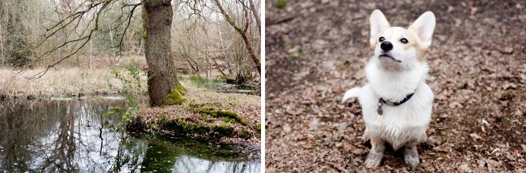 Winston-Rachel-Oates-EppingForest-4