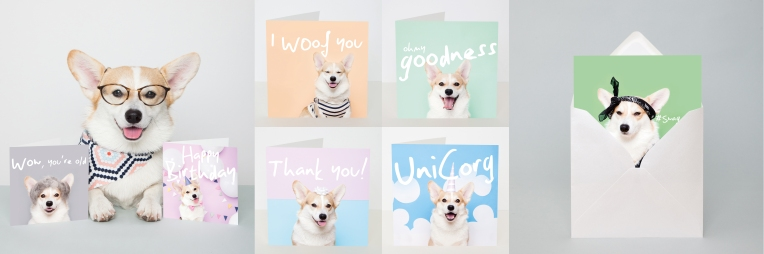 blogimagemulti-winnythecorgi
