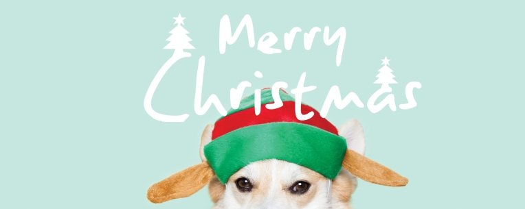 winnythecorgi-headerxmas1