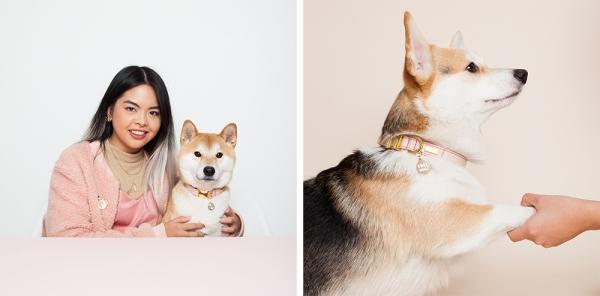 helloharriet-dogs-racheloates-16